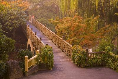 Footbridge Through the Autumn Colors