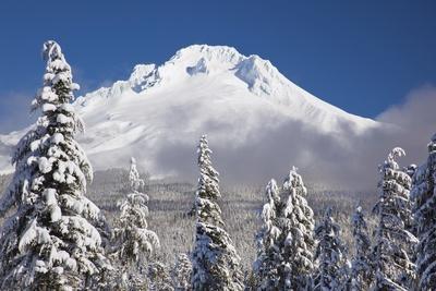 Winter Snow Adds Beauty to Mt. Hood, Oregon. Oregon Cascades.