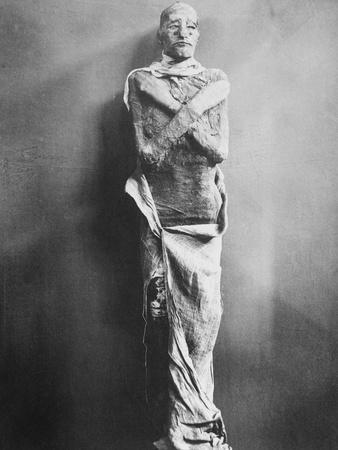 King Ramses III Mummy