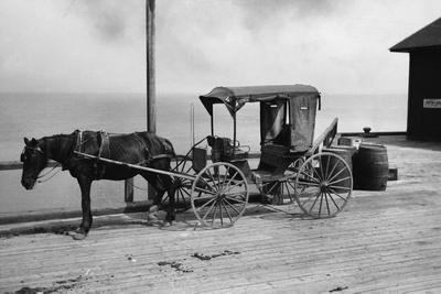 Old Time Horse and Buggy