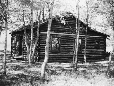 Exterior View of a Log Cabin