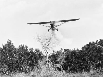 Airplane Dropping Cloud of Mosquito Insecticide