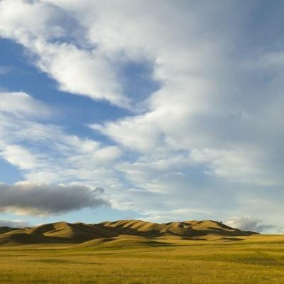 Grazing Farmland Hills and Cumulus Clouds, Evening, South Island, New Zealand