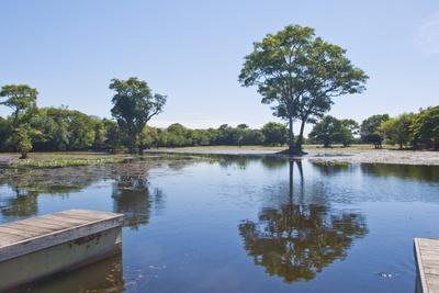Lagoon in Front of Pousada Rio Mutum, Mato Grosso, Brazil