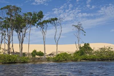 Preguicas River at Lencois Maranheinses National Park, Brazil