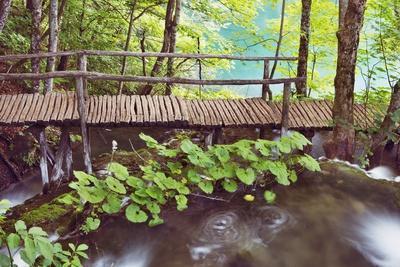 Wooden Footbridge in Plitvice National Park