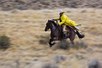 Cowboy Riding the Range