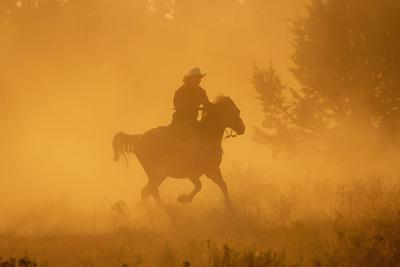 Cowgirl Riding in the Dust