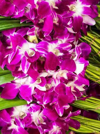 Bangkok Street Flower Market. Flowers Ready for Display at Many Places including Temples