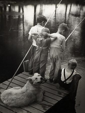 Dogs Supervising Fishing Boys