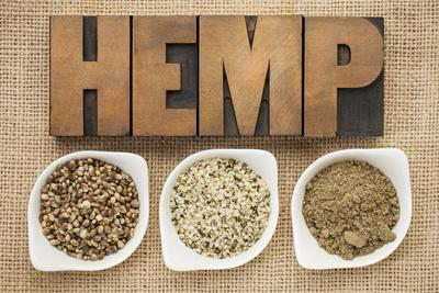 Hemp Products: Seeds, Hearts (Shelled Seeds) and Protein Powder in Small Ceramic Bowls