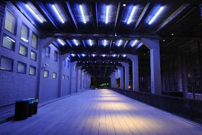 Tunnel on the High Line in New York City