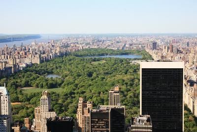 Central Park New Yyork