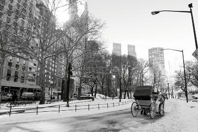 Winter Snow in Central Park, Manhattan, New York City