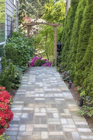 Garden Brick Paver Path with Arbor