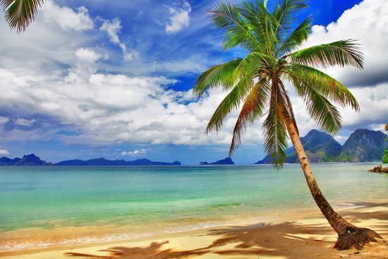 Tropical Beach Scenery Photographic