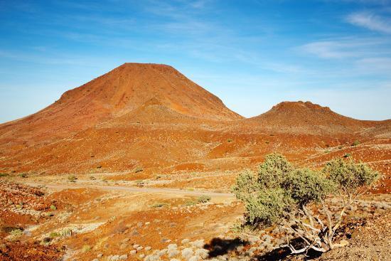 Kalahari Desert Landscape Photographic Print by DmitryP at ...