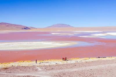 Laguna Colorada, Reserva Nacional De Fauna Andina Eduardo Avaroa, Los Lipez, Bolivia