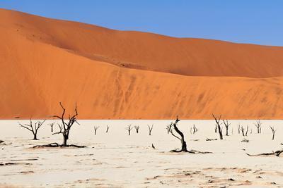 Sossusvlei Area in Namibia