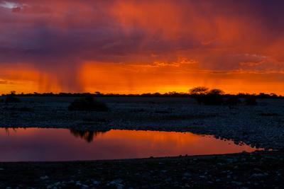 Picturesque Scene of Etosha National Park over Sunset