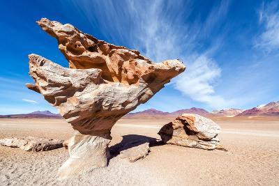 Arbol De Piedra in Bolivia