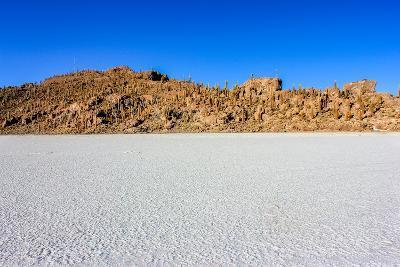 Isla De Pescadores,Uyuni,Bolivia