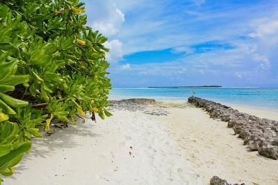 Beach (Maldives)