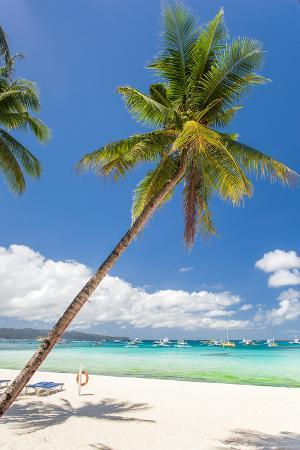 Tropical Beach with Palm and White Sand