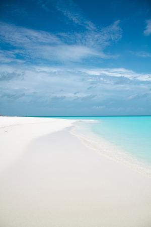 Tropical Beach Skies and Ocean