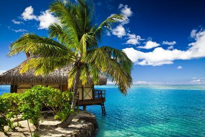 Tropical Bungalow and Palm Tree next to Amazing Blue Lagoon