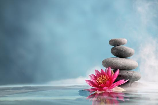 Spa Still Life with Water Lily and Zen Stone in a Serenity Pool ...