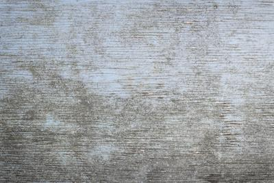 Old Wooden Background of Weathered Distressed Rustic Wood with Faded Light Blue Paint Showing Woodg