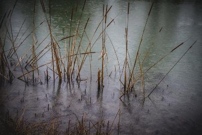 Tajo River.Aranjuez, Madrid, Spain.World Heritage Site by UNESCO in 2001