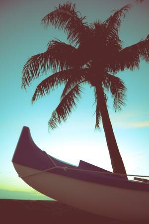 Retro Style Canoe and Palm Tree