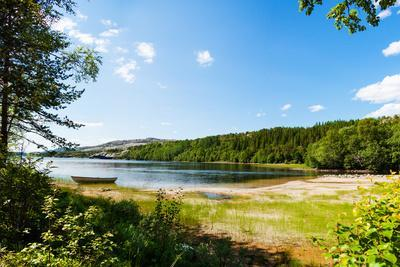 Panoramic View of A Lake with Boat from A Forest in Northern Norway