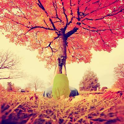 Feet Resting on a Tree Trunk during Fall When the Leaves are Turning Colors Toned with a Retro Vint