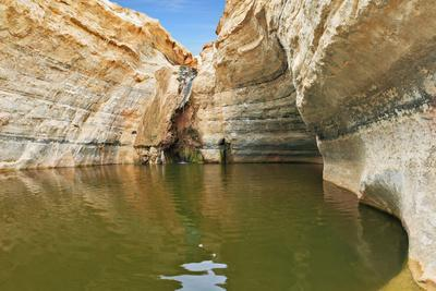 Unique Canyon in the Desert. Picturesque Canyon Ein-Avdat in the Negev Desert. Sandstone Canyon Wal