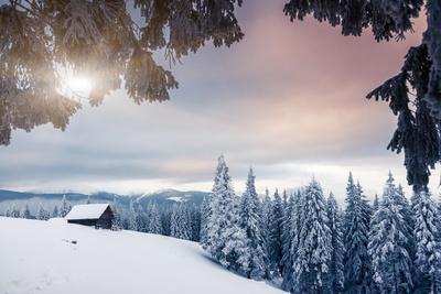 Fantastic Winter Landscape. Dramatic Overcast Sky. National Park. Carpathian, Ukraine, Europe. Beau
