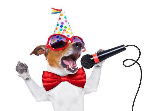 Happy Birthday Dog Singing Photographic Print By Javier Brosch At AllPosters