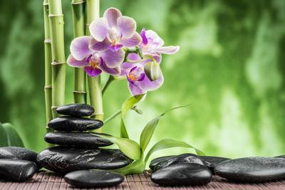 Spa Concept with Zen Basalt Stones ,Orchid and Bamboo