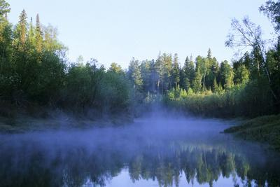 Morning Mist over River Negustyah