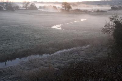 Avon Valley (Hampshire) Floodplain at Dawn, Near Breamore