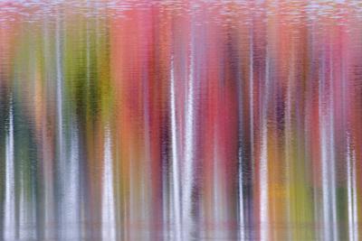 Autumn Colour Reflections, Council Lake
