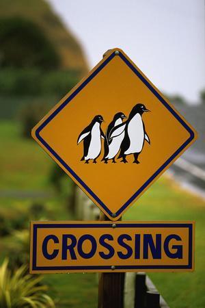 Penguin Crossing Road Sign