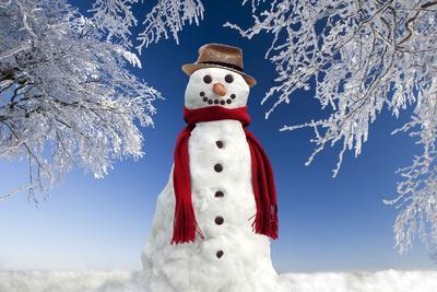Snowman in Winter Snow