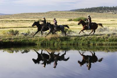 Cattlemen Riding Quarter