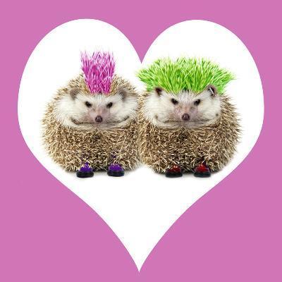 Punk Girl and Boy Hedgehog in Pink Heart Shaped Frame