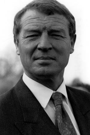Paddy Ashdown, Lib Dem