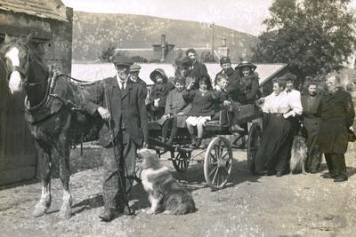 Group of People on an Outing with Horse and Dogs