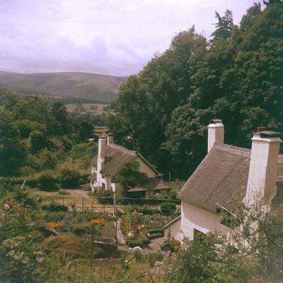 Selworthy Thatches